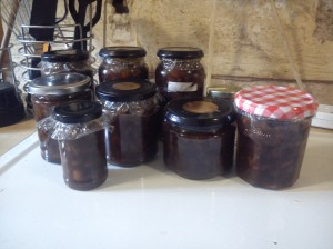 My first ever batch of apple chutney